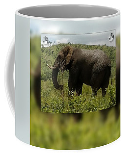 Elephant 4 Coffee Mug