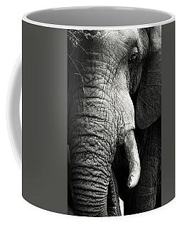 Elephant Close-up Portrait Coffee Mug