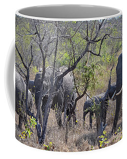 Coffee Mug featuring the photograph Elephant Family On The Move by Jeff at JSJ Photography