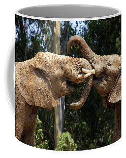 Elephant Play Coffee Mug