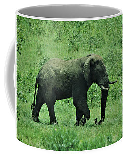 Elephant Walks Coffee Mug