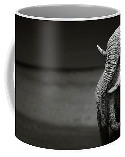 Elephants Interacting Coffee Mug