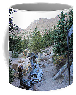 Coffee Mug featuring the photograph Elevation 11,500 by Christin Brodie