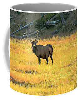 Elk Buck Yellowstone Coffee Mug