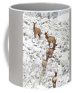 Elk Cows In Snow Coffee Mug