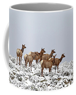 Elk Cows On The Alert In The Tetons Coffee Mug