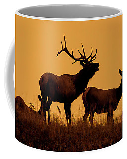 Elk Dawn Coffee Mug
