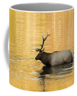 Elk In Golden River Coffee Mug
