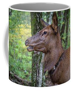 Elk In The Woods Coffee Mug