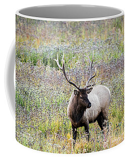 Elk In Wildflowers #1 Coffee Mug