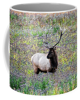 Elk In Wildflowers #2 Coffee Mug