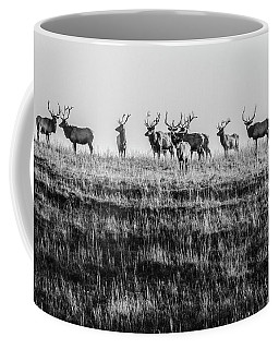 Coffee Mug featuring the photograph Elk On The Ridge by Jay Stockhaus
