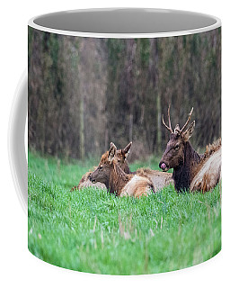 Coffee Mug featuring the photograph Elk Relaxing by Paul Freidlund
