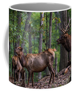 Elk Romance Coffee Mug