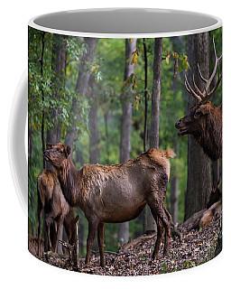 Elk Romance Coffee Mug