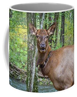 Elk In The Woods 2 Coffee Mug