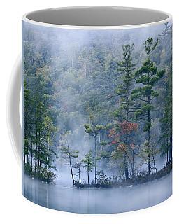 Emerald Lake In Fog Emerald Lake State Coffee Mug