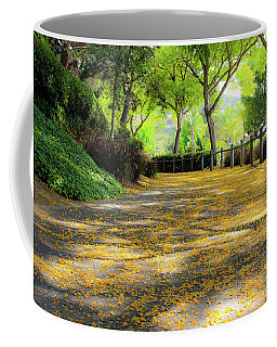 Coffee Mug featuring the photograph Enchanted Path by Alison Frank