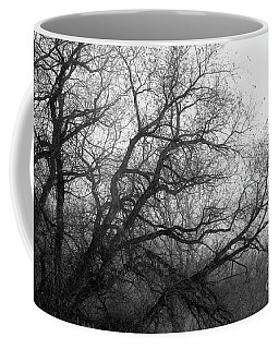 Coffee Mug featuring the photograph Enchanted Forest by Ana V Ramirez