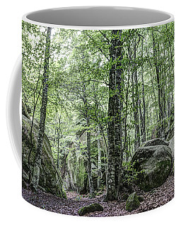 Enchanted Rocks IIi In Catalonia Coffee Mug