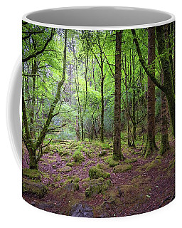 Enchanted Woods - 2017 Christopher Buff, Www.aviationbuff.com Coffee Mug