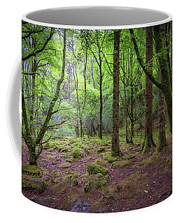 Enchanted Woods - 2017 Christopher Buff, Www.aviationbuff.com Coffee Mug
