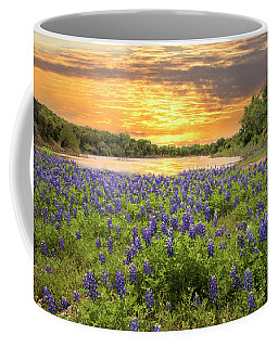 End Of A Bluebonnet Day Coffee Mug