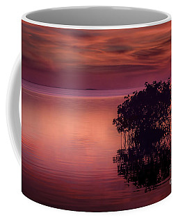 End Of Another Day Coffee Mug