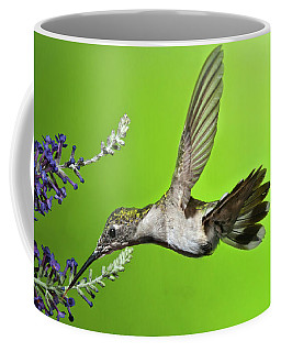 Coffee Mug featuring the photograph End Of Summer Hummer Mug by Lara Ellis