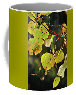 Coffee Mug featuring the photograph End Of Summer by Ron Cline