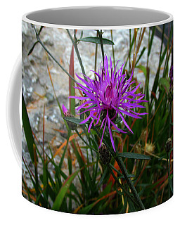 End Of Summers Joy Coffee Mug