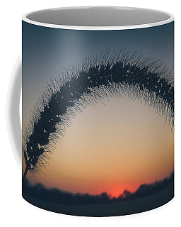 Coffee Mug featuring the photograph End Of The Day by Viviana  Nadowski