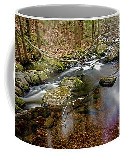 Enders Falls Coffee Mug