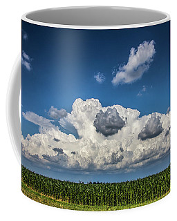 Enjoying Some Cotton Candy On The 4th 004 Coffee Mug