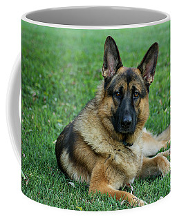 Enjoying The Day Coffee Mug