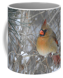 Enjoying The Snow Coffee Mug by Betty-Anne McDonald