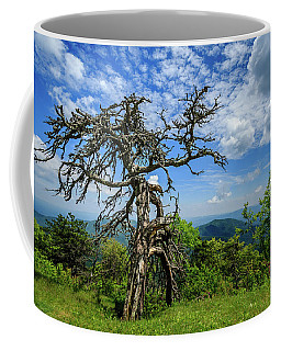 Ent At The Top Of The Hill - Color Coffee Mug by Joni Eskridge