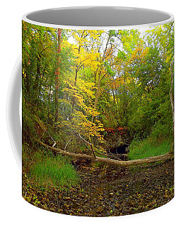 Coffee Mug featuring the photograph Enter Autumn by Viviana  Nadowski