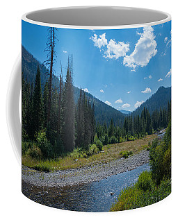 Entering Yellowstone National Park Coffee Mug
