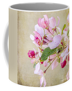 Coffee Mug featuring the photograph Enticement by Betty LaRue
