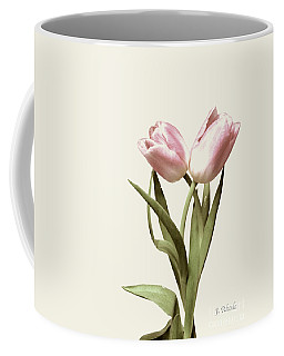 Entwined Tulips Coffee Mug by Jeannie Rhode