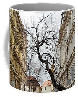 Enveloped Coffee Mug