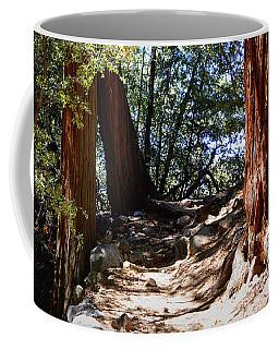 Ernie Maxwell Scenic Trail - Idyllwild Coffee Mug by Glenn McCarthy