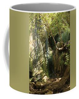 Escondido Falls In May Coffee Mug