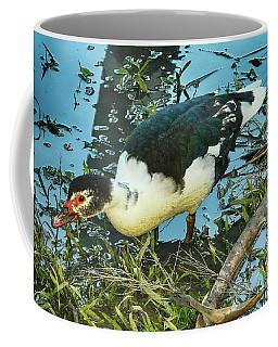 Estuary Duck Coffee Mug