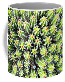 Euphorbia Coffee Mug by Delphimages Photo Creations