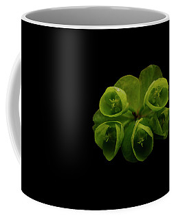 Euphorbia Coffee Mug by Keith Elliott