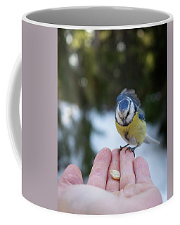 Eurasian Blue Tit Lunch Time Coffee Mug