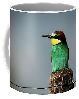 Coffee Mug featuring the photograph European Bee Eater by Wolfgang Vogt