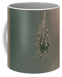 European Garden Spider B Coffee Mug